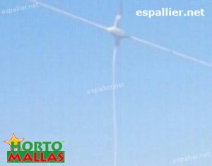 hortomallas trellis net installed for plant support